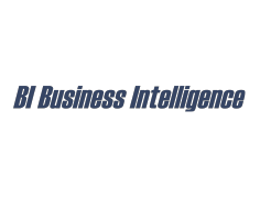BI Business Intelligence GmbH