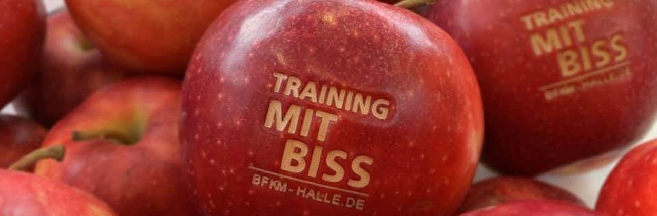 Training mit Biss